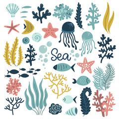 underwater world set of elements, sea ocean, cute mollusks, coral medusa plants and fish, vector illustration