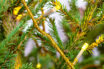 yellow string lights on natural christmas tree close-up indoor