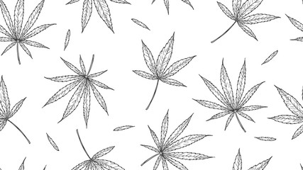 Cannabis pattern. marijuana leaves, hand drawn hemp background. medical natural healing leaf vector seamless texture. Seamless hemp and cannabis pattern illustration