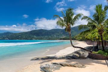 Famous Beau Vallon beach with coconut palm tree on Mahe island, Seychelles.