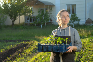 woman in backyard with seedling plant, gardening concept