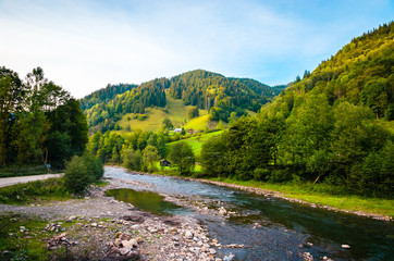Wall Mural - Panoramic mountain river view. Summer in the mountains