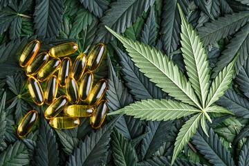 Cannabis Sativa Leaves On Dark COVID 19 Coronavirus,.Assorted cannabis products, pills and cbd oil - medical marijuana concept,alternative herb medicine.