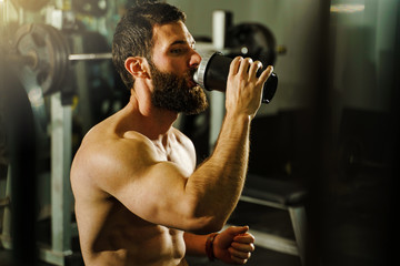 Side view portrait of young muscular caucasian man bodybuilder shirtless male sitting in dark gym holding protein supplement shaker drinking supplementation in training waist up black hair and beard