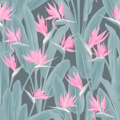 Strelitzia reginae tropical flower vector seamless pattern. Bohemian tropical plant fabric print design. South African plant tropical blossom of crane flower, strelitzia. Floral textile print.