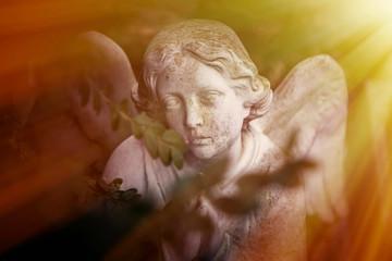 Fotomurales - Vintage image of a sad angel. Ancient white statue. Religion, faith, death, eternity concept