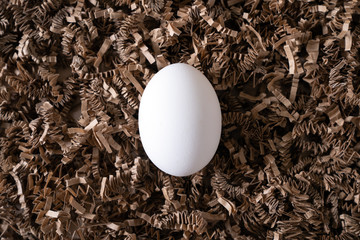 Lay flat view one white chicken egg in the middle of nest for investment, retirement or financial concept
