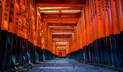 京都 伏見稲荷 鳥居 ~ Fushimi Inari Shrine, thousands of vermilion torii gates, Kyoto, Japan ~