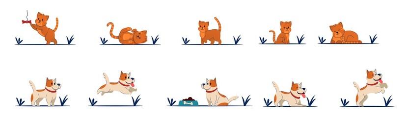Cat litte kitten vector character Beautiful dog. Fotobehang