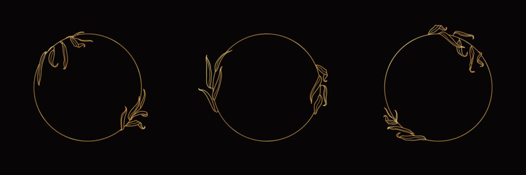 Set of Logos with Golden Willow Tree Branch. Round floral frame in trendy minimal linear style. Vector Emblem
