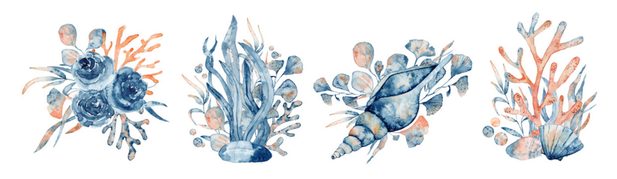 Watercolor underwater floral bouquet with corals and shells, hand drawn illustration