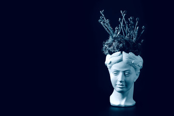Young fern sprouts and moss in the head of the ancient statue. Concept on the theme of hairdressing...