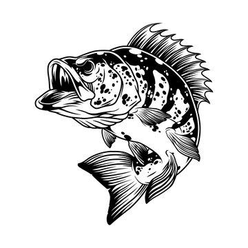 Aggressive bass fish monochrome template