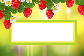 Wall Mural - natural green background