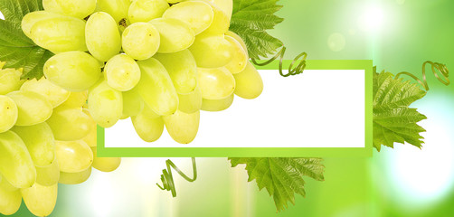 Wall Mural - Fruits frame background space for text.Summer card,grape frame