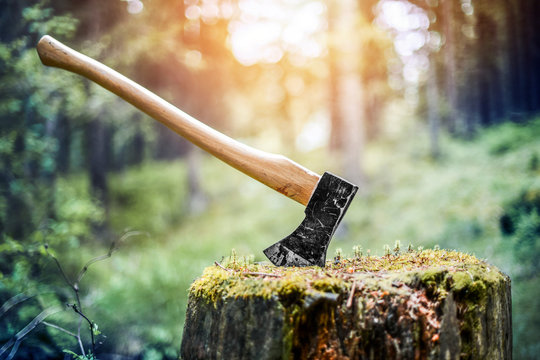 Axe cut in the chopping block, forest green background. Lumber jacks work tool