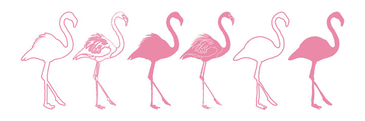Canvas Prints Flamingo Flamingo Set Isolated Silhouette Illustration