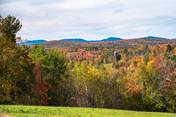 Beautiful rolling hills covered in grassy fields and deciduous trees at the peak of fall foliage on a sunny autumn day. Groton, VT, USA.