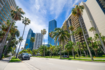Miami, Florida, USA : Luxurious condominiums and hi-rises, and beautiful palm trees in Brickell Bay...
