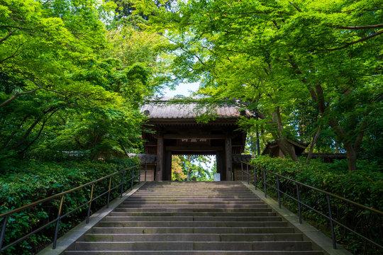 鎌倉 円覚寺の山門
