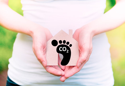 Carbon footprint, sustainable development,