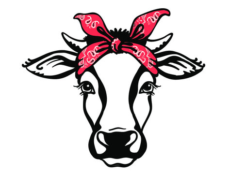 Cow head with red bandanas. Vector black graphic illustration isolated on white. Farm animal. Cow portrait printable file
