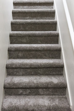 New grey carpet on basement stairs