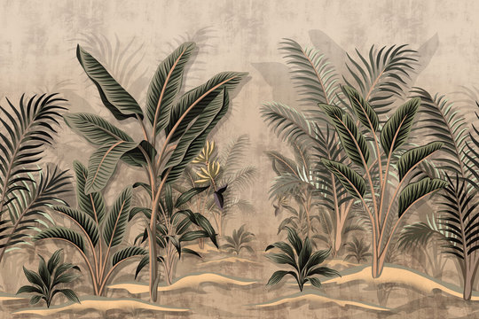 Vintage tropical palm trees banana palm tree dirt background. Wallpaper of Tropical Rain Forest
