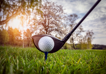 Wall Mural - Golf club and ball in grass