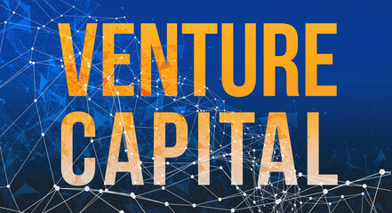 Venture Capital theme with abstract network lines and patterns