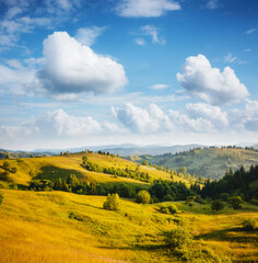 Wall Mural - Fantastic countryside landscape in morning light. Location place Carpathian mountains, Ukraine, Europe.