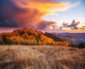 Wall Mural - Splendid sunset in the autumn alpine highlands. Location place Carpathian mountains, Ukraine, Europe.
