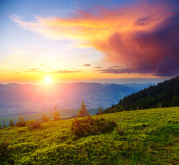 Wall Mural - Picturesque sunset in the alpine highlands. Location place Carpathian mountains, Ukraine, Europe.