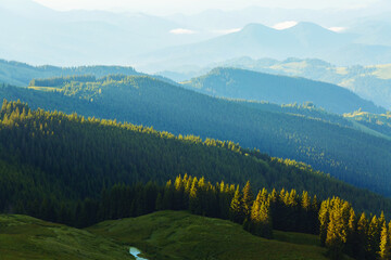 Wall Mural - Splendid countryside landscape in the morning light. Location place Carpathian mountains, Ukraine, Europe.