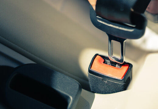 wearing a seat belt in the vehicle
