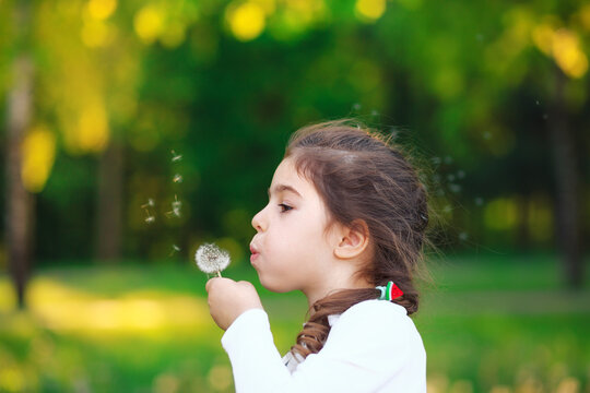 Portrait of prettyl little Girl blowing dandelion flower and smiling in summer park. Happy cute child having fun outdoors.