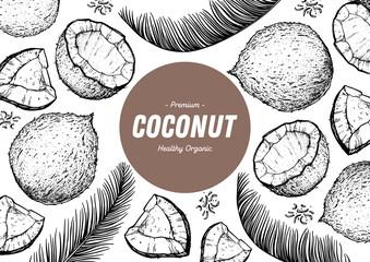 Coconut design template. Hand drawn vector. Food illustration Engraved style. Vector botanical illustration, tropical background.