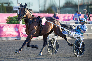 The horse Propulsionand the driver Orjan Kihlstrom win the final of the Elitloppet trotting event at Solvalla track without an audience due to the coronavirus disease (COVID-19) outbreak, in Stockholm