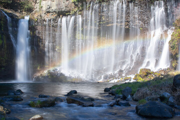 Photo sur Plexiglas Rivière de la forêt Shiraito Waterfall with the rainbow in Shizuoka Japan