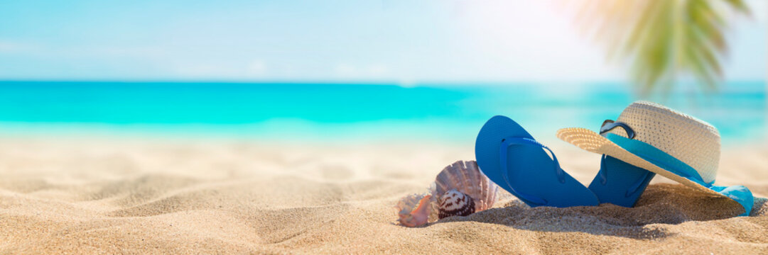 Sunny tropical beach with turquoise water, summer holidays vacation background, seashells in sand, palm tree on the beach