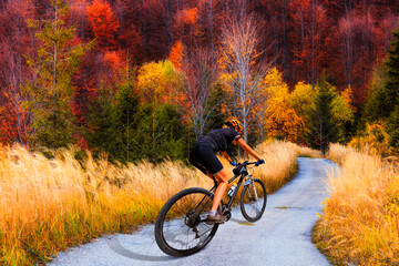 Wall Mural - Mountain biking woman riding on bike in summer mountains forest landscape. Woman cycling MTB flow trail track. Outdoor sport activity.
