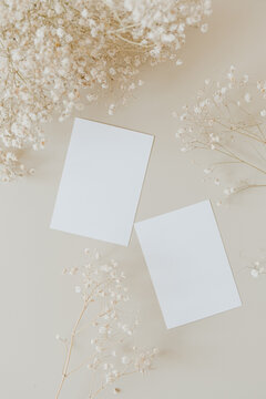 Blank paper cards with mockup copy space and gypsophila flowers on beige background. Flat lay, top view.