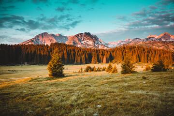 壁紙(ウォールミューラル) - Idyllic alpine valley. Locations place Durmitor National park, Montenegro, Balkans, Europe.