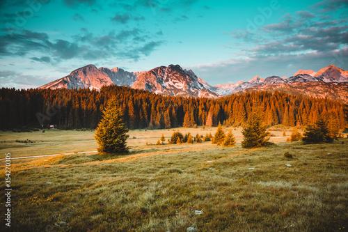 Wall mural Idyllic alpine valley. Locations place Durmitor National park, Montenegro, Balkans, Europe.