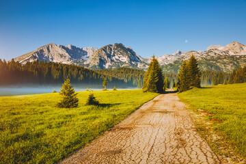 壁紙(ウォールミューラル) - Idyllic alpine valley on a sunny day. Locations place Durmitor National park, Montenegro, Balkans, Europe.