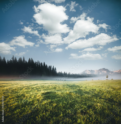 Wall mural Idyllic alpine valley on a sunny day. Locations place Durmitor National park, Montenegro, Balkans, Europe.