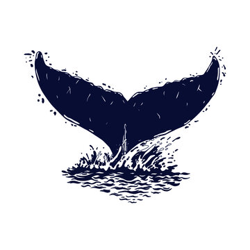 Whale's tale is sticking out of the water. Water drops. Vector illustration.