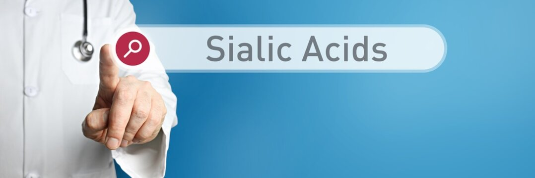 Sialic Acids. Doctor in smock points with his finger to a search box. The term Sialic Acids is in focus. Symbol for illness, health, medicine