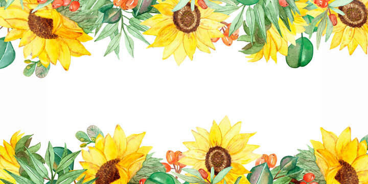 Watercolor hand painted nature garden plants banner frame with yellow sunflowers, orange sea buckthorn berries and green eucalyptus leaves on branch bouquet with the space for text