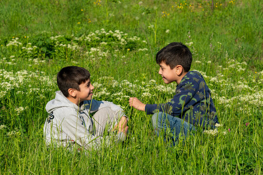 Two boys are sitting in the meadow on a sunny day and have fun talking